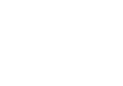 The Adventure Element