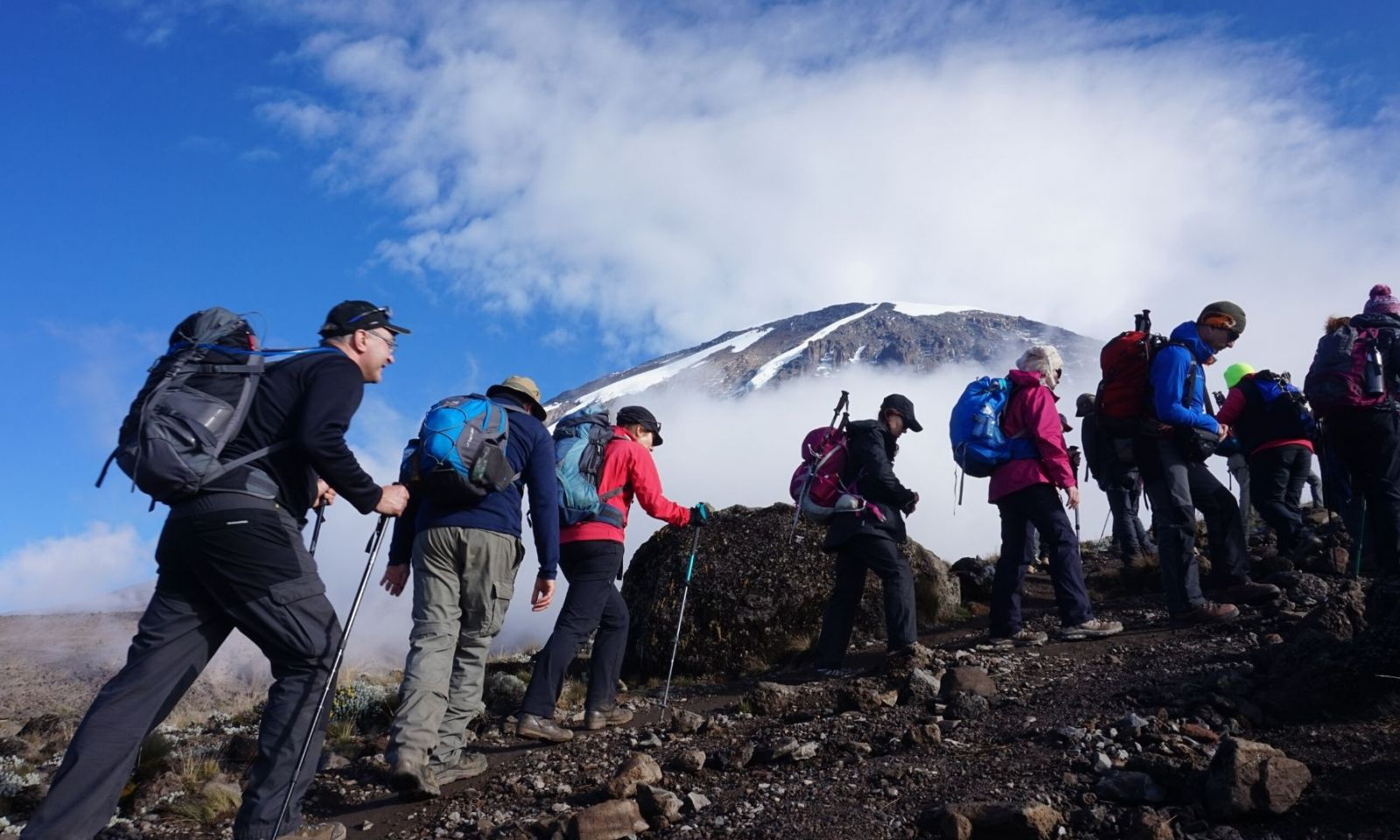 Group trekking with Kilimanjaro in the background.